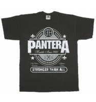Футболка Pantera - Stronger Than All